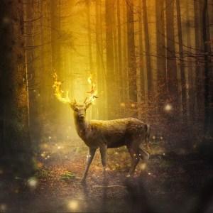 fantasy, deer, mammal