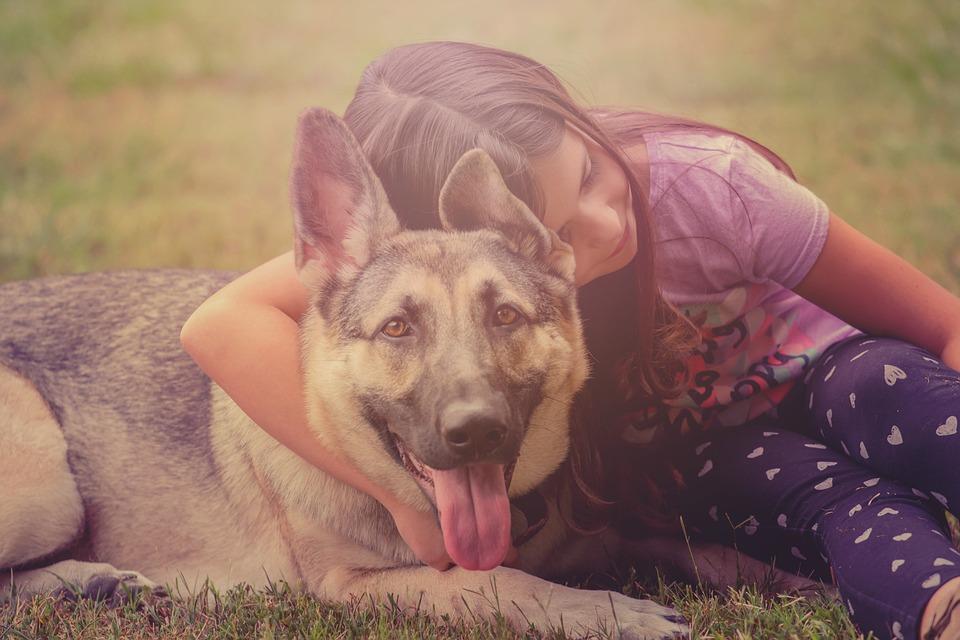 Communication animale ou paroles d'animaux