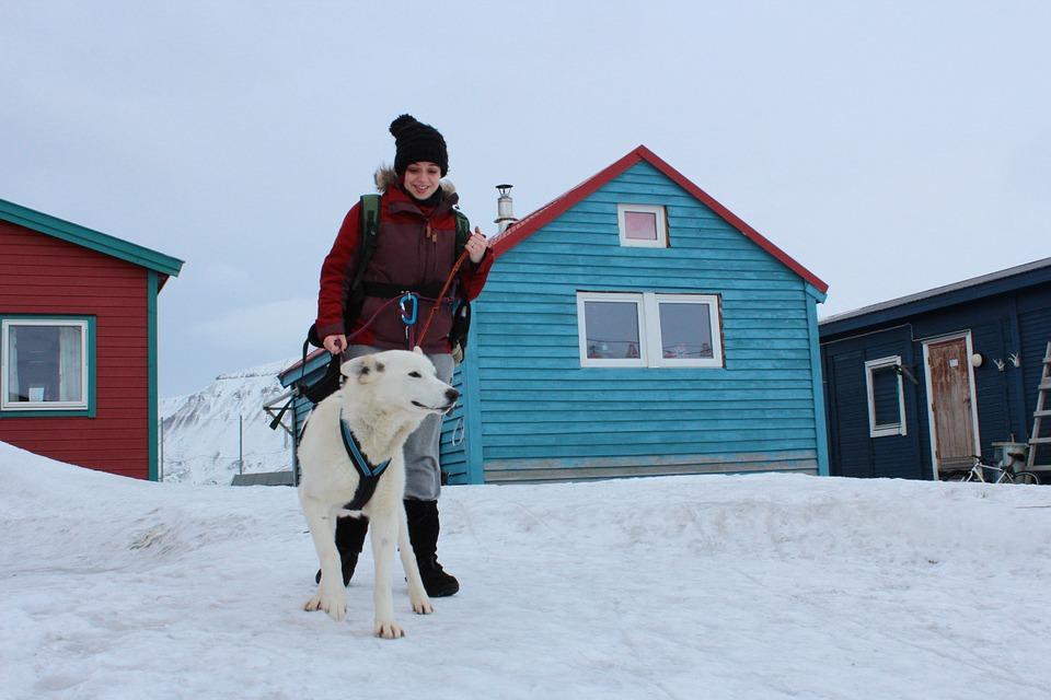 Voici ce qu'il faut savoir pour pratiquer un sport en hiver avec son chien