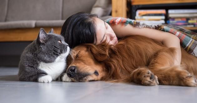 COVID-19 : les 10 réflexes à adopter pour le bien-être des animaux de compagnie
