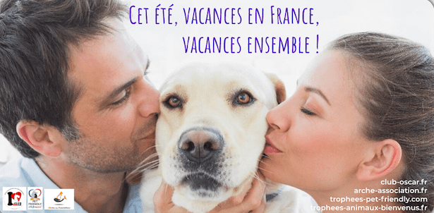 Été 2020 : pet friendly et toutourisme vous aide à identifier des lieux de vacances avec animaux admis