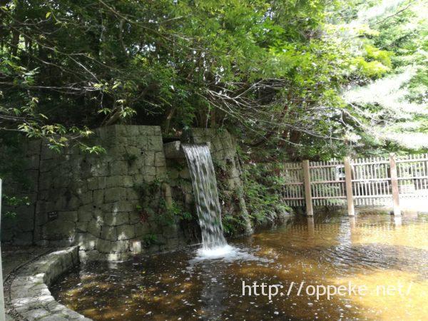 神戸森林植物園,水