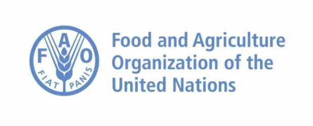 FAO–Hungarian Government Scholarship 2019/2020 for Study in Hungary (Fully Funded)