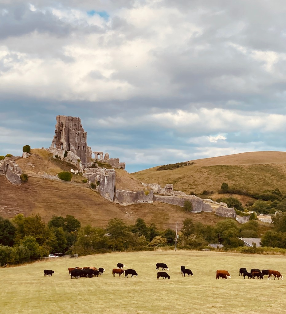 Corfe Castle Dorset in 2020