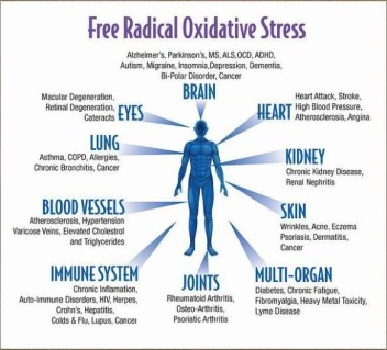 oxidative stress image