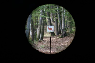 Leica Magnus 1.5-10x42 reticle 4a subtensions at 6x