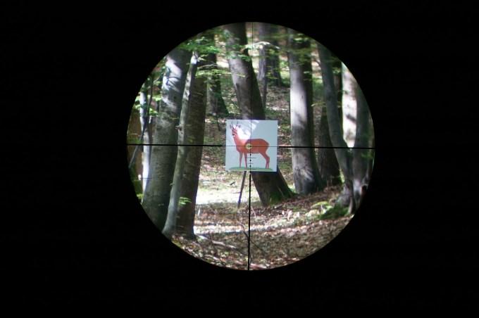 Leica Magnus 1.5-10x42 reticle Ballistik subtensions at 10x
