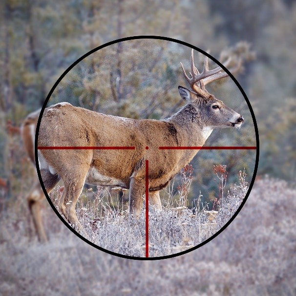 DichroTech reticle at daytime; source: Meopta optics