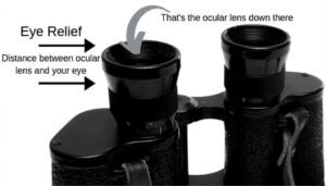 eye relief in binoculars
