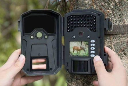 Best Cheapest Trail Cameras 2020