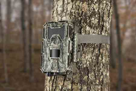 Best Trail Cameras Under $200