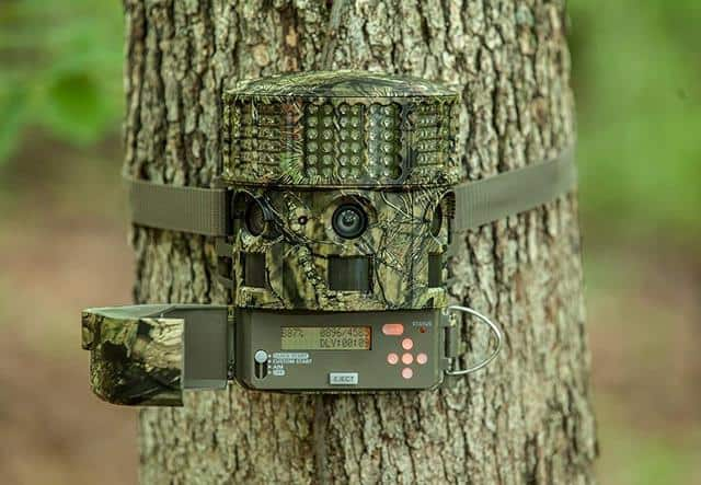 How To Setup And Use Trail Camera