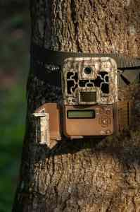 How To Aim Trail Camera