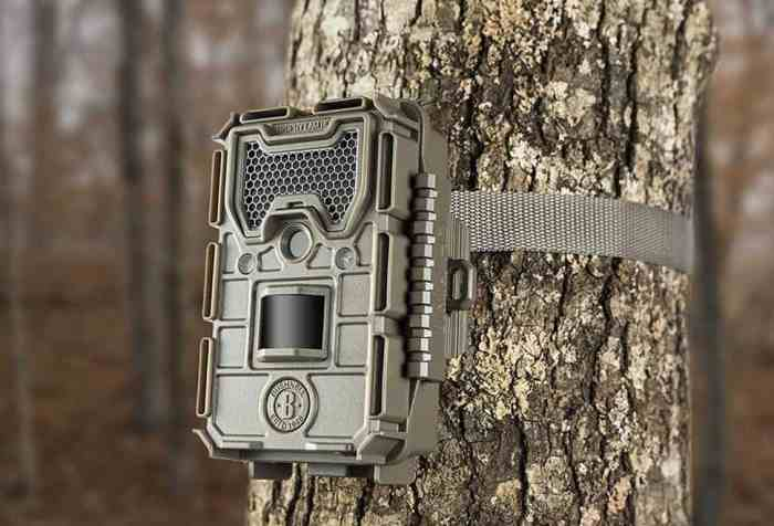How To Hide Your Trail Camera From Other People