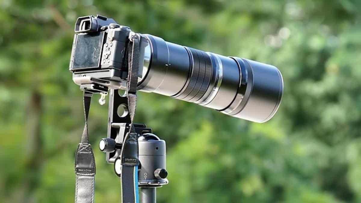 Sony Mirrorless Camera Reviews