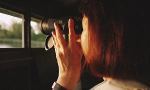 Bushnell Trophy Binoculars 10x42 Review