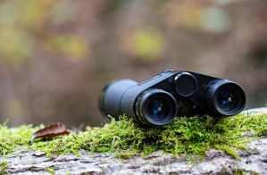 Skygenius 8x21 Small Binocular Reviews