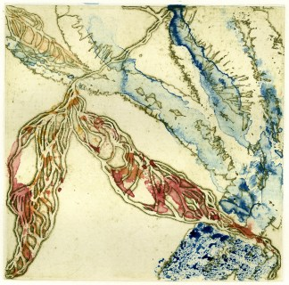Intaglio etching with watercolor monoprint, 6x6 in.