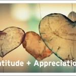 7 Internal Power: Part- 2/7 THE POWER OF APPRECIATION