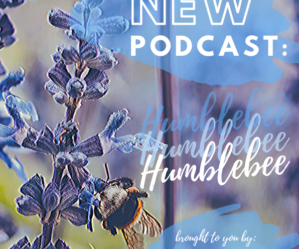 Humblebee: the Podcast is LIVE