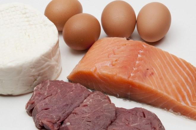 Regnskogen raseres for å produsere norsk kjøtt, laks og melk