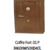 Coffre Fort 01 P [ H60XW50X D40], Ser+Comb, ALM0020