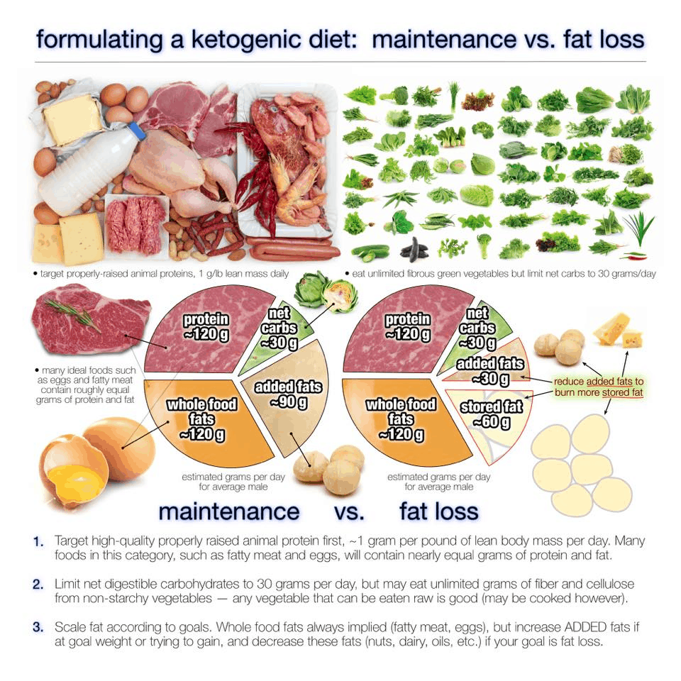 lean protein and vegetables weight loss