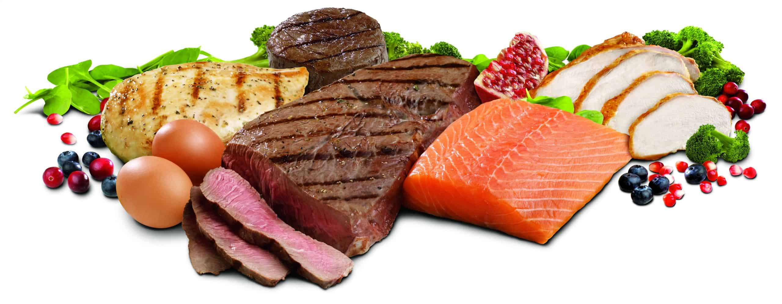 image-protein-foods