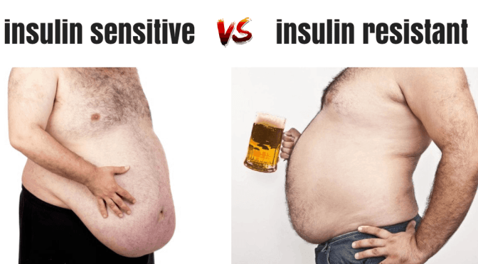 does insulin resistance REALLY cause obesity?