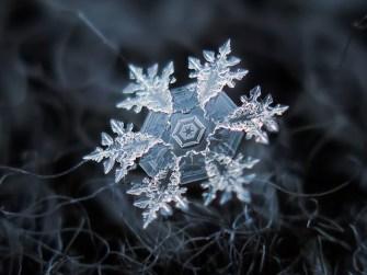 Знаехте ли колко красиви са снежинките?