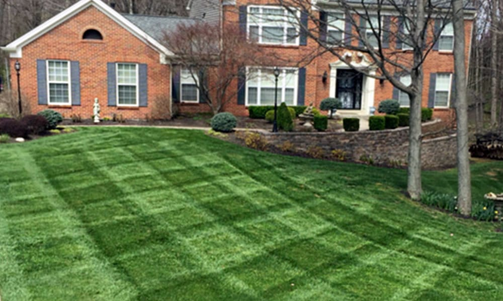 Lawn Care and Landscaping Company 3