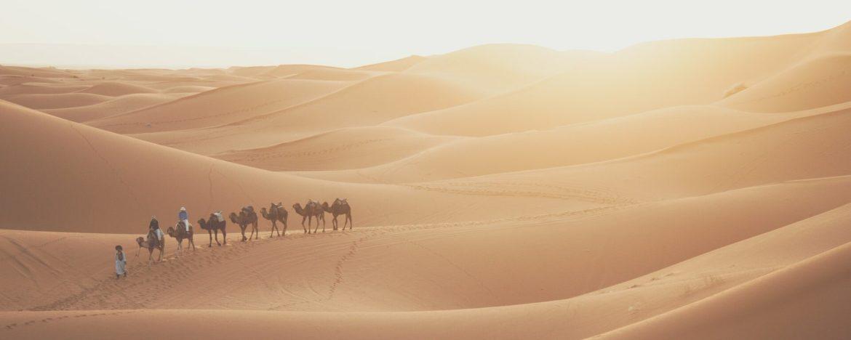 Digitale nomade: werk waar en wanneer jij wilt