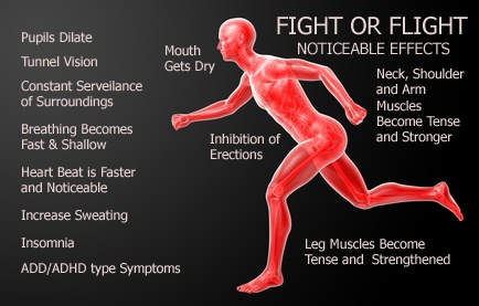 Fight or Flight: Noticable Effects