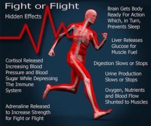 Fight or Flight: Hidden Effects