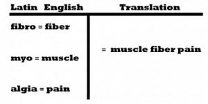 fibromyalgia - latin to english breakdown