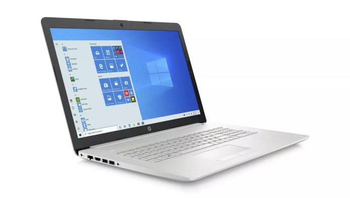 HP 17-by3021nf Argent - MX330