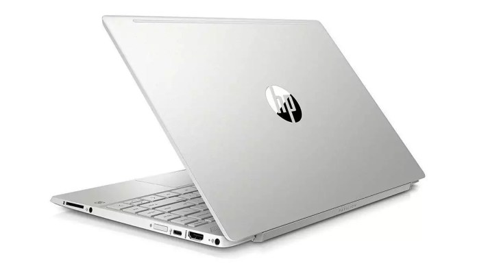 HP Pavilion 13-an1015nf Argent naturel