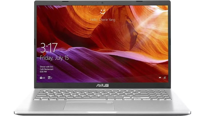 Asus Notebook A509JB