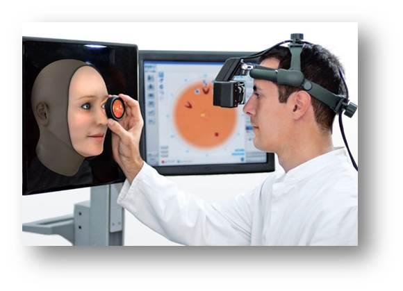Pre optometry coursework