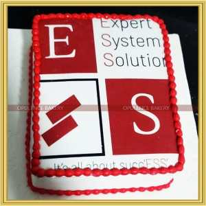 Customized Cake for Software Company