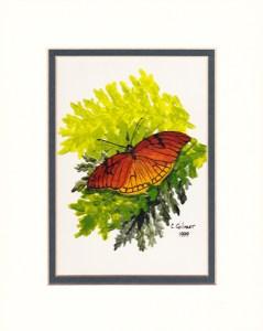 Old Butterflies 2 sm