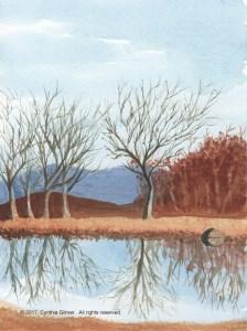 7th-fairway-pond