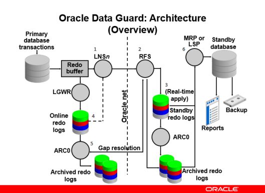 Oracle Dataguard Architecture  ORACLEHELP