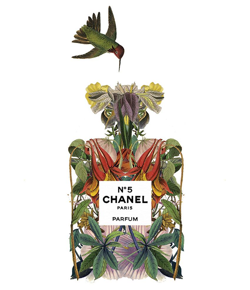 Sixto-Juan-Zavala-Perfumes.10