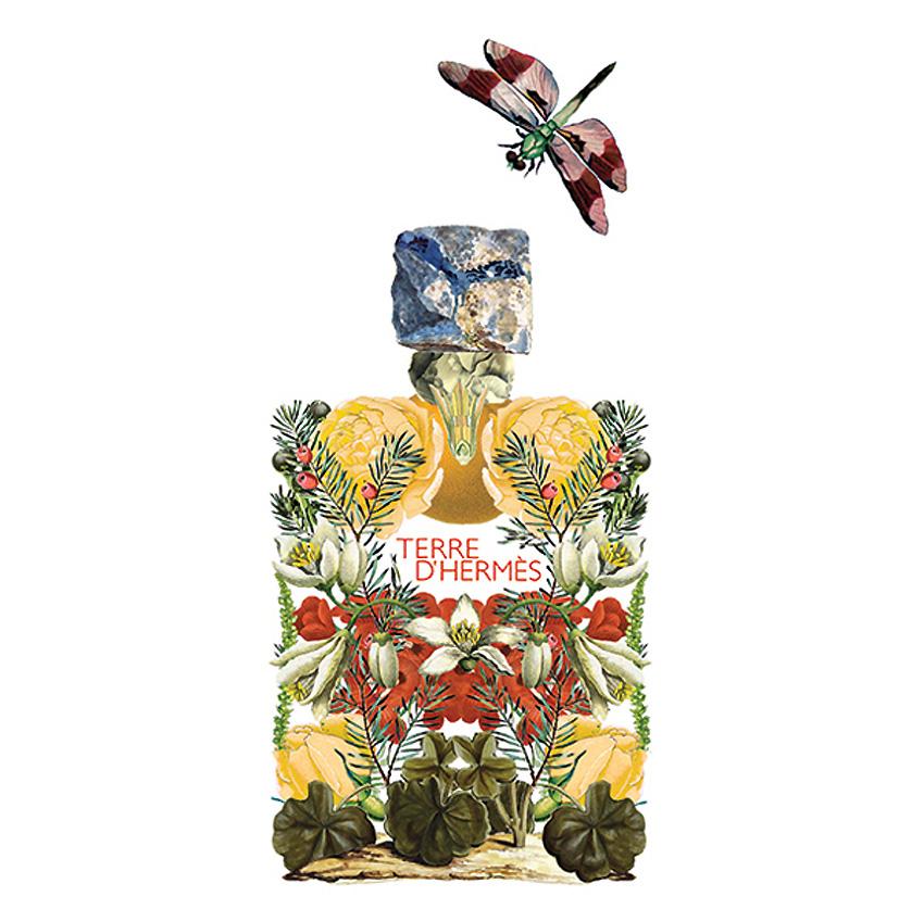 Sixto-Juan-Zavala-Perfumes.6