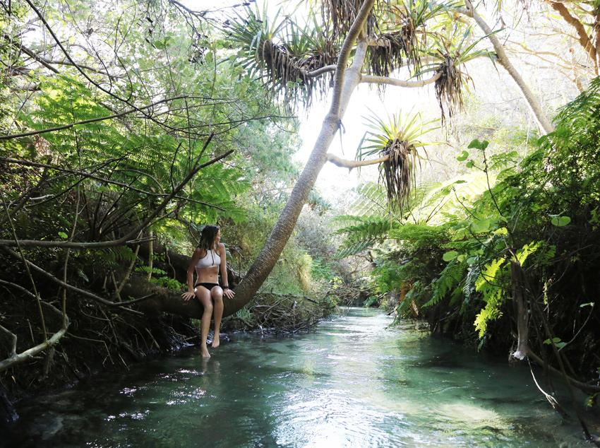 Havis-Eli-Creek-Swim.3