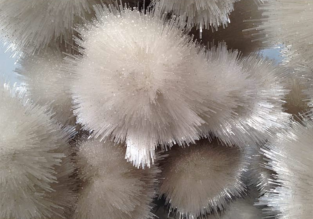 Tara, Donovan, pace, gallery, artist, paris, dust, perspex, installation, white, furry, balls