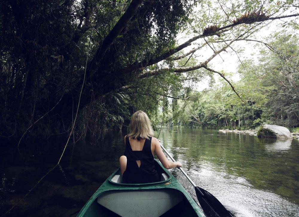 Daintree, Rainforest, Kayaking, Travel, Oracle, Fox, Relax, River,