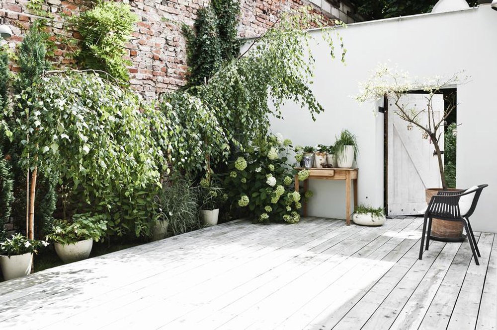 Oracle, Fox, Sunday, Sanctuary, Polish, Farmhouse, White, Minimalist, Interior, Indoor, Plants, Scandinavian, Style, All, White, Interior, Danish, Style, Outdoor, Garden