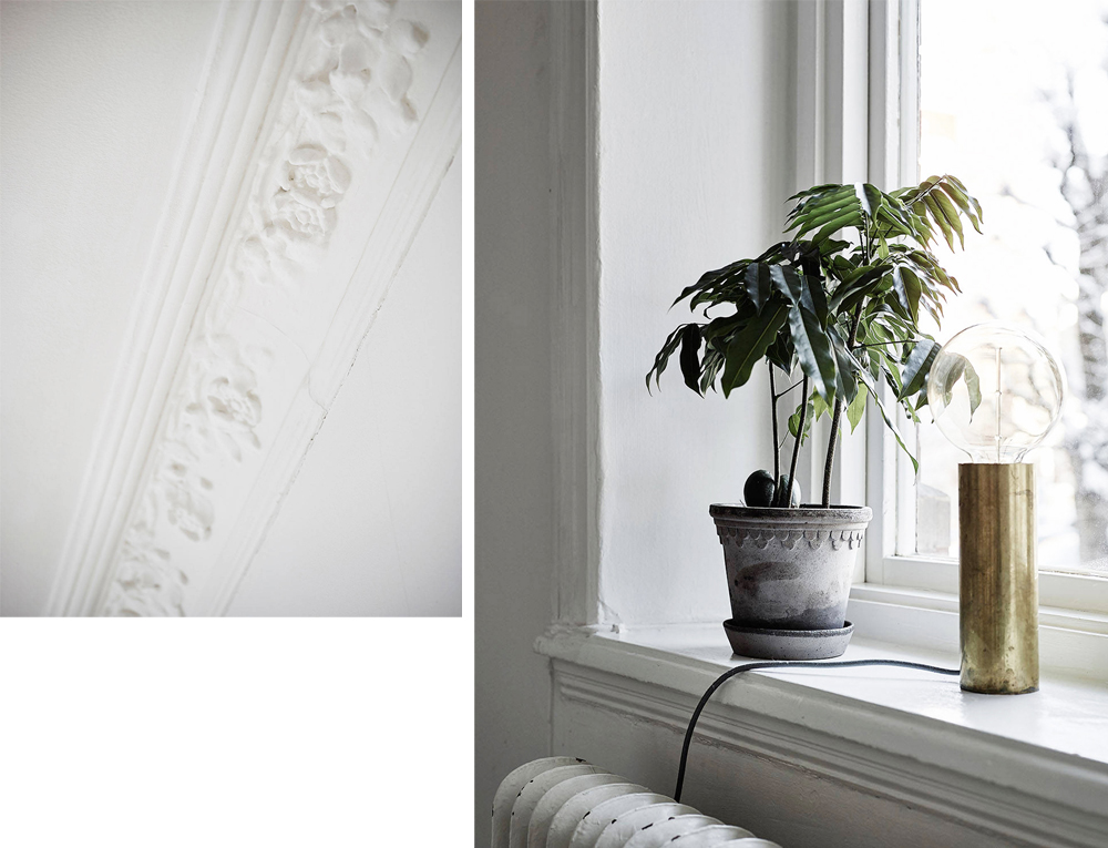 Oracle, Fox, Sunday, Sanctuary, Detail, Oriented, Black, and, white, Scandinavian, Interior, indoor plants,